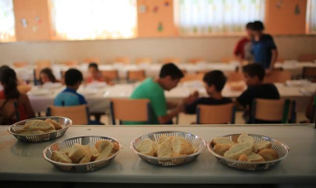 La provincia y su proyecto de municipalizaci n de los for Comedor escolar proyecto