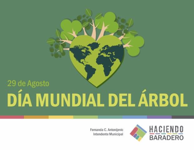 Dia Mundial Del Medio Ambiente 2019 Ecosia
