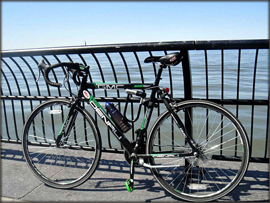 f653e4257 Giant High-Speed Specialized Carbon TCR Advanced Pro. Disc – Rocinante III
